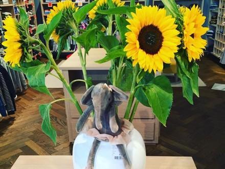 We wish you a sunny weekend!!!  #derkleinesagmeister #kidsfashion #childrenswear #sunflower #summ…