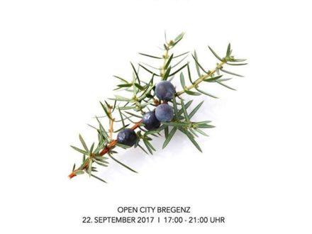 Gin night – 22/09/17 in Bregenz @roemerstr with @sagmeister_women @roemervii @valentini_schuhe @…